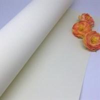 Фоамиран premium 20*30, толщина 1мм арт. 65640 (41) (кремовый)