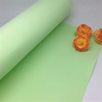 Фоамиран premium 20*30 см, толщина 1мм арт. 4033 (21) бледно зеленый