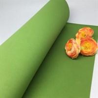 Фоамиран premium 20*30 см, толщина 1мм арт. 45520 (27) темно-зеленый